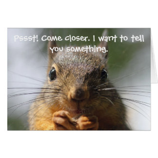 Funny Squirrel Birthday Card