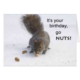 Funny squirrel birthday card - Go nuts