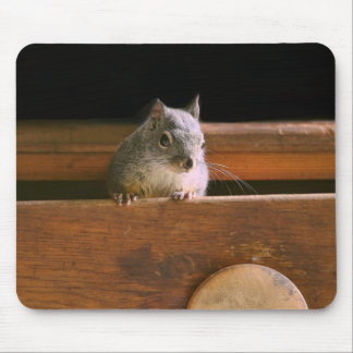 Funny Squirrel Hiding Mouse Pad