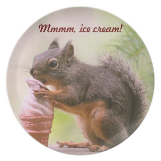 Funny Squirrel Licking Ice Cream Cone Dinner Plate