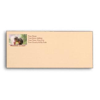Funny Squirrel Licking Ice Cream Cone Envelopes