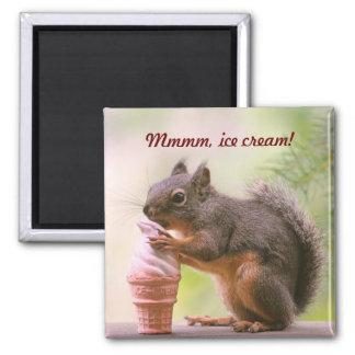 Funny Squirrel Licking Ice Cream Cone Fridge Magnets