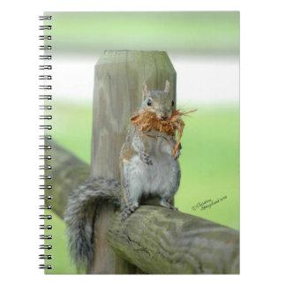 Funny Squirrel Notebook