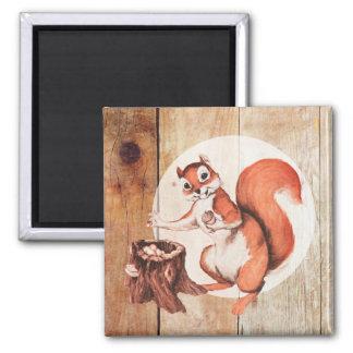 Funny squirrel on wood fridge magnets