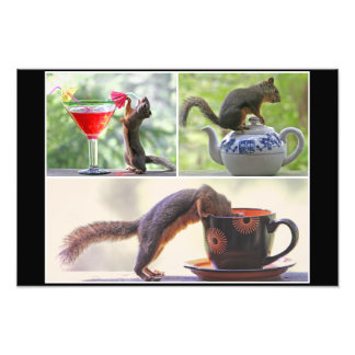 Funny Squirrel Picture Collage Photo Print