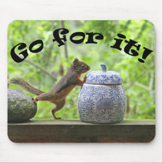 Funny Squirrel Picture ~ Go For It! Mousepads