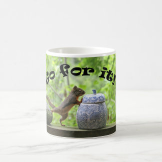 Funny Squirrel Picture ~ Go For It! Classic White Coffee Mug