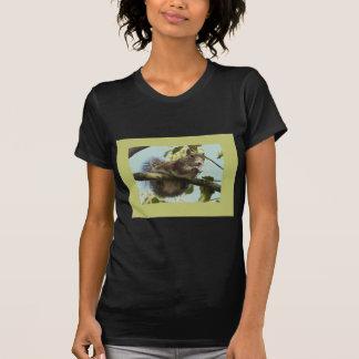 Funny Squirrel Shirt