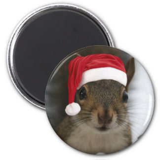 Funny Squirrel Wearing Santa Hat Magnet