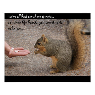 """Funny Squirrel  """"when life hands you sweet tarts"""" Poster"""