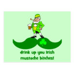 funny St. Patrick's Day mustache Post Cards