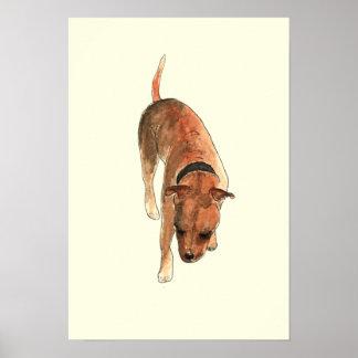 Funny Staffordshire bull terrier watercolour art Poster