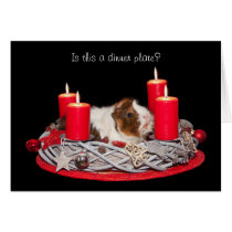 Funny Stressed Guinea Pig customized Christmas Card