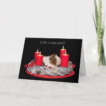 Funny Stressed Guinea Pig customized Christmas Holiday Card