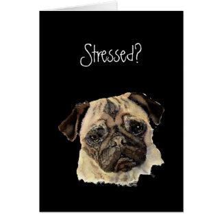 Funny, Stressed? Hug a Pug!, Dog, Pet, Animal Card