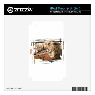Funny striped kitten iPod touch 4G skin