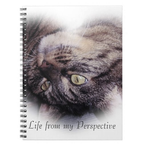 Funny Tabby Cat with a quote Journal Notebook