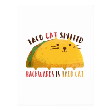 Funny Taco Cat Cartoon Teen Boy Girl Mexican Gifts Postcard