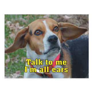Funny Talk To Me I'm All Ears Beagle Postcard