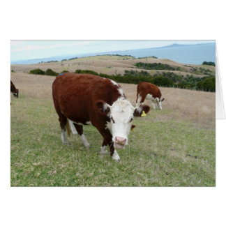 Funny Talking Cow Greeting Card