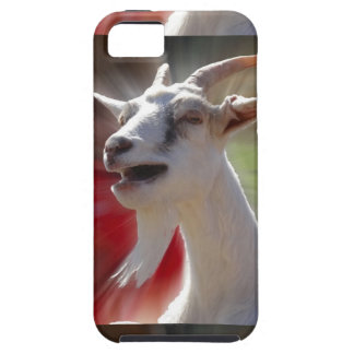 Funny Talking Goat Photograph iPhone SE/5/5s Case