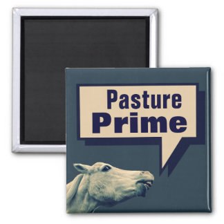 Funny Talking Horse 2 Inch Square Magnet