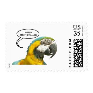 Funny Talking Parrot Happy Birthday Postage