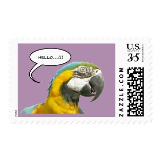 Funny Talking Parrot Hello Postage