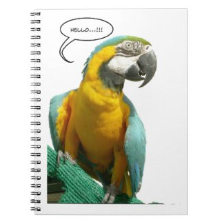 Funny Talking Parrot Notebook
