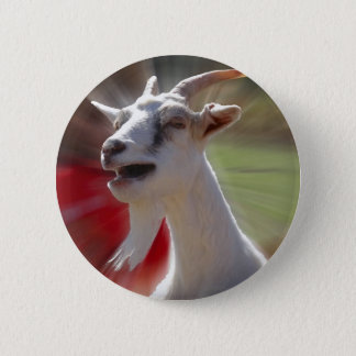 Funny Tallking Goat Photograph Button