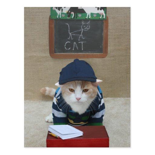 Funny Teacher to Parent Postcard