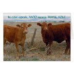 Funny Thank You - Red Cow Animal Humor - Ranch Cards