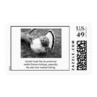 Funny Thanksgiving Turkey Postage Stamp