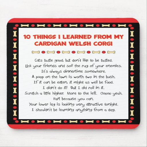 Funny Things I Learned From Cardigan Welsh Corgi Mouse Pads