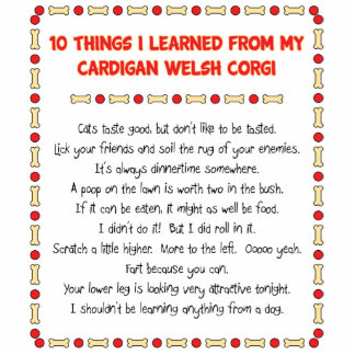 Funny Things I Learned From Cardigan Welsh Corgi Standing Photo Sculpture