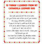 Funny Things I Learned From Catahoula Leopard Dog Standing Photo Sculpture