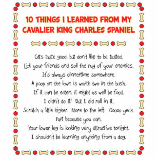 Funny Things I Learned From Cavalier King Charles Standing Photo Sculpture