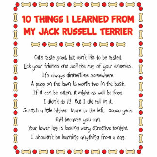 Funny Things I Learned From Jack Russell Terrier Standing Photo Sculpture