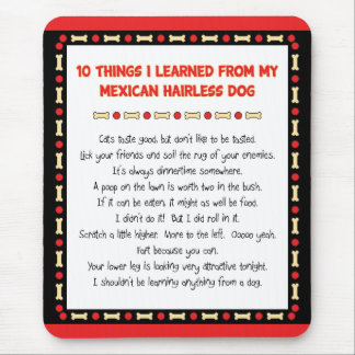 Funny Things I Learned From Mexican Hairless Dog Mousepad