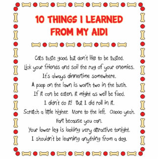 Funny Things I Learned From My Aidi Photo Cut Out
