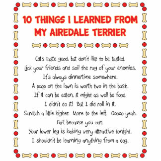 Funny Things I Learned From My Airedale Terrier Photo Cut Out