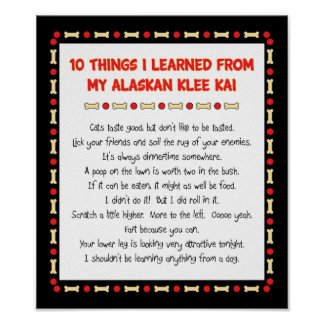 Funny Things I Learned From My Alaskan Klee Kai Poster
