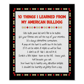 Funny Things I Learned From My American Bulldog Print