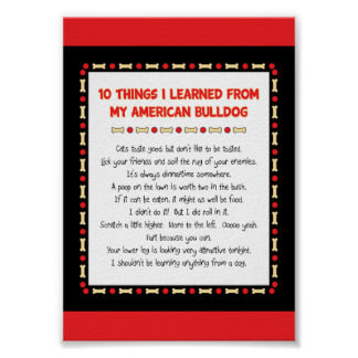 Funny Things I Learned From My American Bulldog Posters