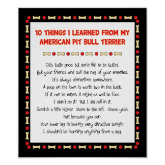 Funny Things I Learned From My American Pit Bull Poster
