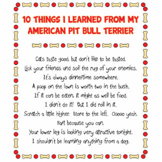 Funny Things I Learned From My American Pit Bull Statuette