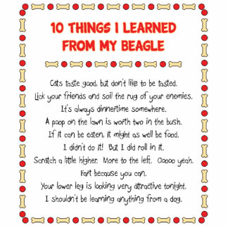 Funny Things I Learned From My Beagle Statuette