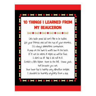 Funny Things I Learned From My Beauceron Postcard