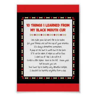 Funny Things I Learned From My Black Mouth Cur Poster