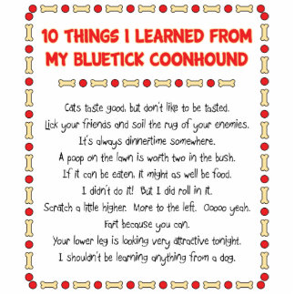 Funny Things I Learned From My Bluetick Coonhound Statuette